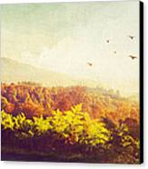 Hazy Morning In Trossachs National Park. Scotland Canvas Print by Jenny Rainbow