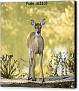 He Makes My Feet Like The Feet Of Deer Canvas Print by Kathy Clark