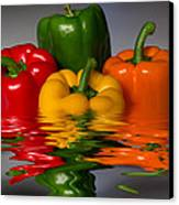 Healthy Reflections Canvas Print by Shane Bechler