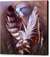 Heart Of A Hawk Canvas Print by Carol Cavalaris