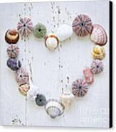 Heart Of Seashells And Rocks Canvas Print by Elena Elisseeva