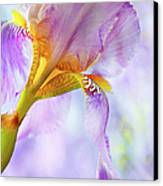 Heavenly Iris 2 Canvas Print by Theresa Tahara