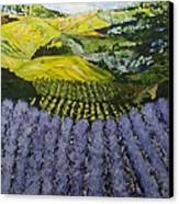 Heavenly Valley Canvas Print