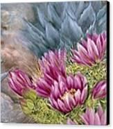Hedgehog In Bloom Canvas Print by Summer Celeste