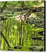 Hells Run Reflections Canvas Print by Adam Jewell