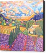 Herbes De Provence  Canvas Print