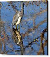 Heron And Reflection In Jekyll Island's Marsh Canvas Print by Bruce Gourley
