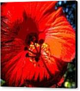 Hibiscus 2 Canvas Print by Mark Malitz