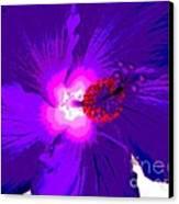 Hibiscus - Flower - Ile De La Reunion - Reunin Island Canvas Print by Francoise Leandre