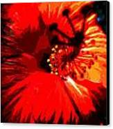 Hibiscus Canvas Print by Mark Malitz