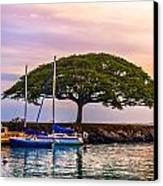 Hickam Harbor View Canvas Print by Lisa Cortez