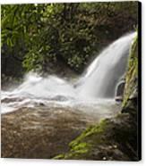 Hidden Waterfall Canvas Print by Debra and Dave Vanderlaan
