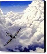 High Flight Canvas Print by Michael Swanson