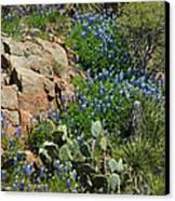 Hillside Blue Canvas Print by Robert Anschutz