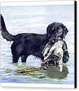 His First Catch Canvas Print by Brenda Beck Fisher
