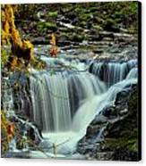 Homestead Falls Canvas Print