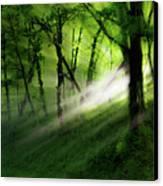 Hope Lights Eternal - A Tranquil Moments Landscape Canvas Print by Dan Carmichael