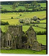 Hore Abbey Ireland Canvas Print by Dick Wood