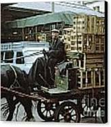 Horse And Cart London 1973 Canvas Print by David Davies