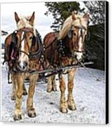 Horse Drawn Sleigh Canvas Print by Edward Fielding