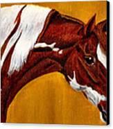 Horse Head Study Canvas Print by Joy Reese
