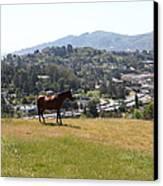 Horse Hill Mill Valley California 5d22662 Canvas Print