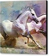 Horse Paintings 004 Canvas Print