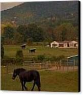 Horseback Riding In Gatlinburg Canvas Print by Dan Sproul