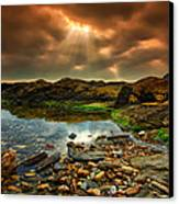 Horseley Cove Rockpool Canvas Print by Mark Leader