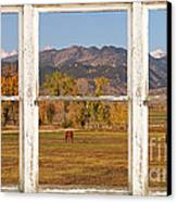 Horses And Autumn Colorado Front Range Picture Window View Canvas Print by James BO  Insogna