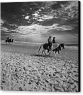 Horses On The Beach Bw Canvas Print by Nelson Watkins