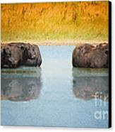 Hot Day Canvas Print