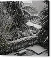 Huge Snowflakes Canvas Print by Giuseppe Epifani