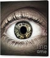 Human Eye Macro Canvas Print by Elena Elisseeva