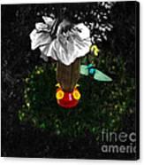 Hummingbird In The Spotlight Canvas Print by Al Bourassa