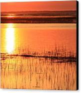 Hunting Island Tidal Marsh Canvas Print by Mountains to the Sea Photo