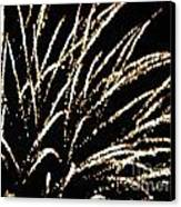 Huron Ohio Fireworks 9 Canvas Print by Jackie Bodnar
