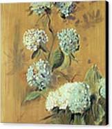 Hydrangeas Canvas Print by Paul Cesar Helleu