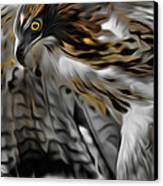 I Am Redtail Square Canvas Print