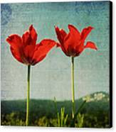 I Go To The Hills When My Heart Is Lonely Canvas Print