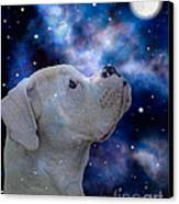 I See The Moon Canvas Print by Judy Wood
