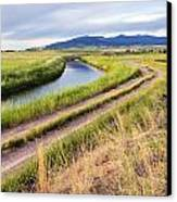 I Wonder Where This Road Might Lead. Canvas Print by Dana Moyer