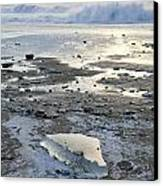 Ice And Waves Canvas Print by Tim Grams
