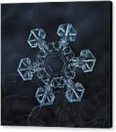 Snowflake Photo - Ice Crown Canvas Print by Alexey Kljatov