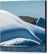 Ice Xx Canvas Print