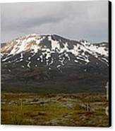 Icelandic Landscaope Canvas Print by Louise Fahy