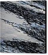 Icy Coast Canvas Print by Susan Hernandez
