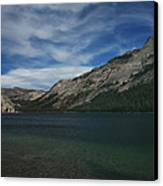If I Spent Forever Here Canvas Print