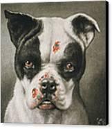 I'm A Bad Dog What Kind Of A Dog Are You Circa 1895 Canvas Print by Aged Pixel