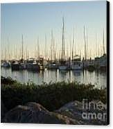 In Harbor Canvas Print by Amy Strong